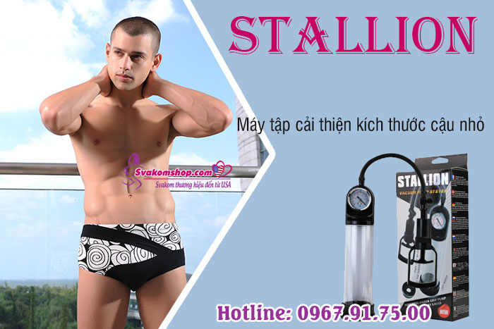 stallion-2