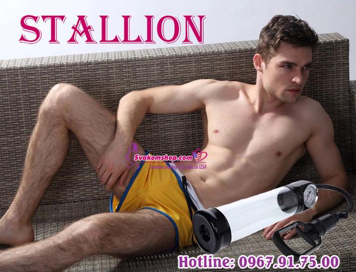stallion-3