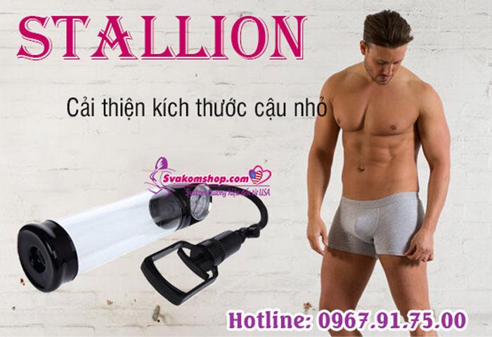 stallion-4