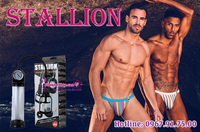 stallion-5